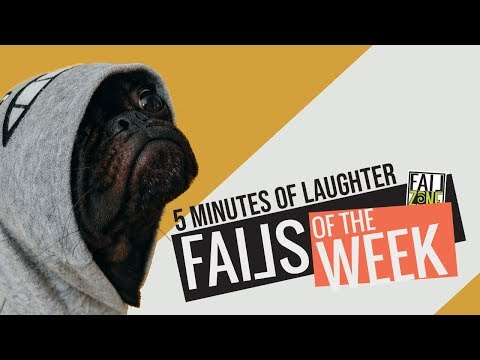 Funny Videos Compilation | Watch And Try To Stop Laughing | FailZone