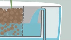Understanding  Aquaponics By Animation