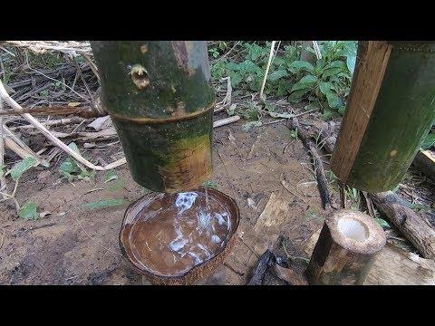 Primitive Technology: Filter dug groundwater