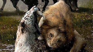 Que pasaria con el León si clonaran a los Dientes de Sable
