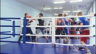 В Бердске появилась новая площадка для занятий боксом