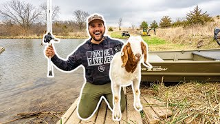 I Took My GOAT FISHING in the BACKYARD POND!!! (Dale Caught His PB)