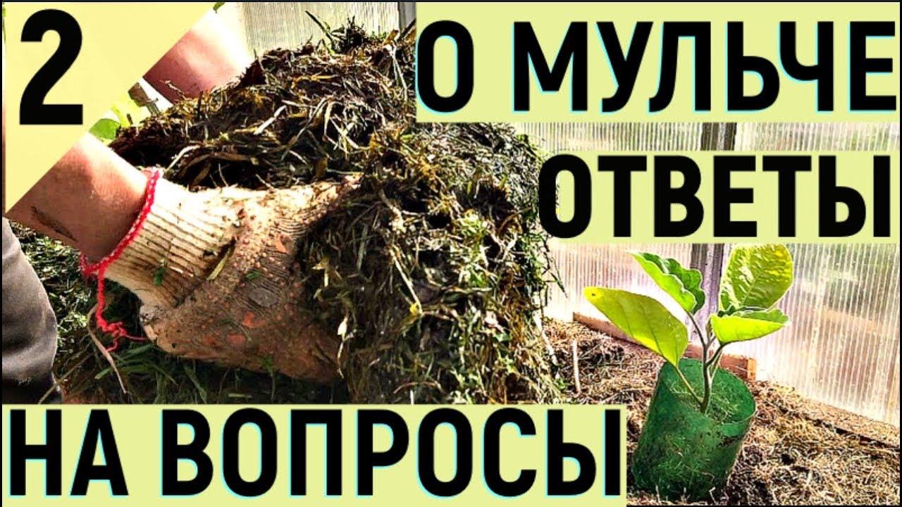 Мульча своими руками видео фото 291