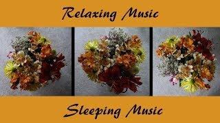 Desires of the Heart - Chris Spheeris, relaxing music 7, night night music, 心灵音乐 thumbnail