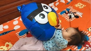 Funny Baby Videos 2017 Try not to laugh