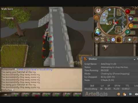 RuneBuddy AIO Woodcutter (updated 7/10/2012) Cuts Anywhere You Want!!!!!!!!