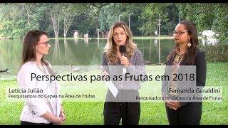 HF EM VÍDEO: Área das frutas aumenta em 2018 (PARTE II)