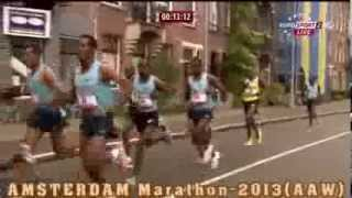 Marathon Amsterdam 2013  (20.10.2013)