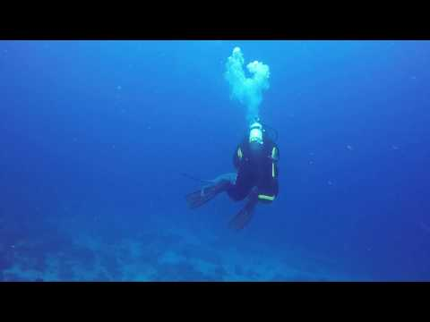 Scuba Diving Solitary Islands – North, North West & South Solitary Islands