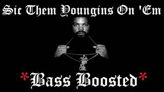 Ice Cube Sic Them Youngins On Em Bass Boosted