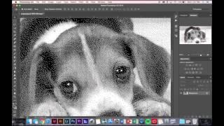 Photoshop: Turning Image into a Bitmap