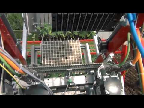 Techmek Magika: Fully Automatic Transplanter with Checchi&Magli
