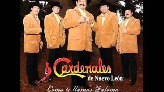 MIX INVASORES DE N.L Y CARDENALES DE N.L