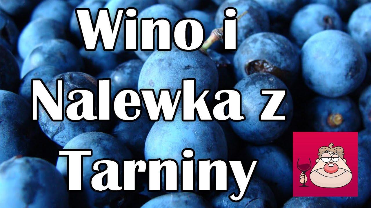 Jak zrobić wino z tarniny i nalewkę z tarniny
