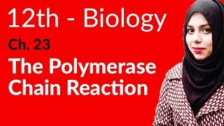 2nd Year Biology, Ch 23 - The Polymerase Chain Reaction - 12th Class Biology