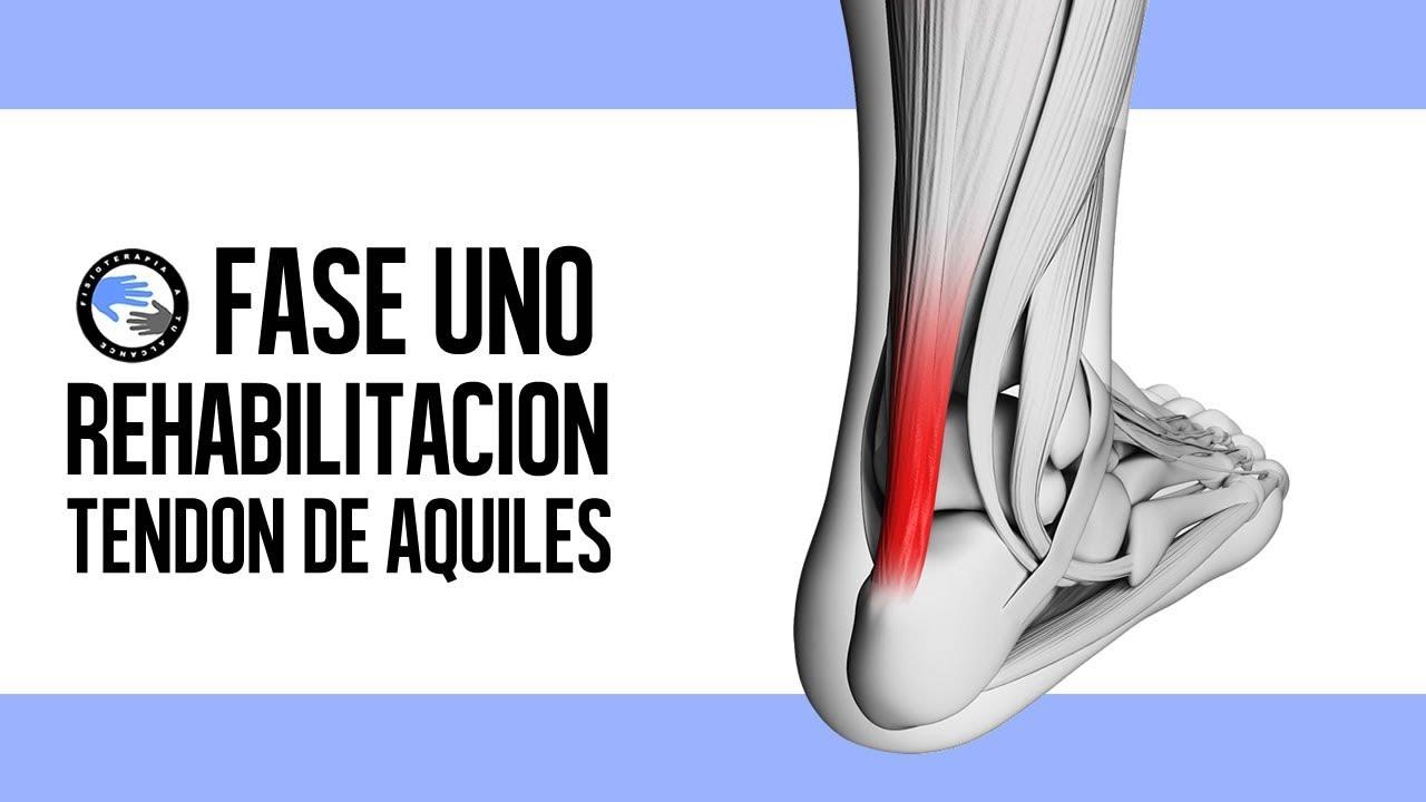 rehabilitacion descompostura connective tissue de aquiles