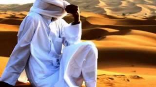 Скачать Anggun Snow Of The Sahara