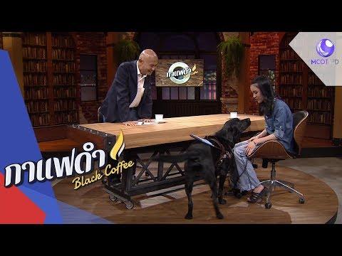 """""""ทราย - ลูเตอร์"""" คู่หูสุนัขนำทางคนตาบอด 2 - วันที่ 06 Sep 2019"""