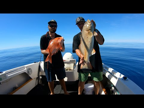 H & D // EP17 // Fishing For Red Emperor And Coral Trout // Justin Catches Massive Lemon Shark!