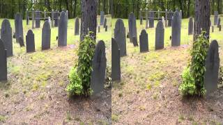 3D Cemetery: Pine Grove (Leominster, MA)