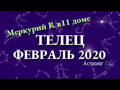 ТЕЛЕЦ гороскоп на ФЕВРАЛЬ 2020. Меркурий Ретро. Астролог Olga