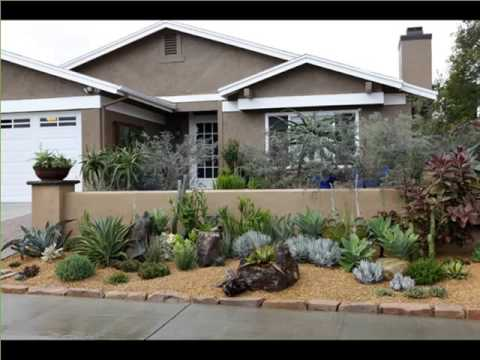 Agave Plant Landscaping Decorating Idea With House