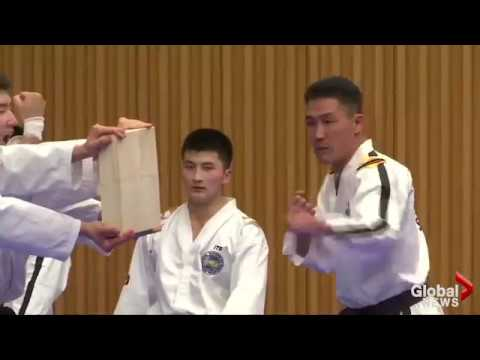 Combined North and South Korean Taekowndo team puts on dazzling demonstration