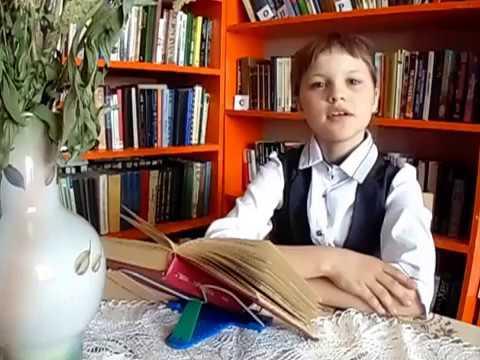 Изображение предпросмотра прочтения – ЕленаСудницына читает произведение «Осенний вечер» Ф.И.Тютчева