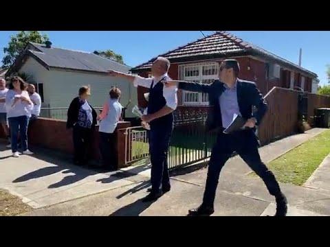 Aggressive Bidder at Sydney Auction Strikes Again! 🤣