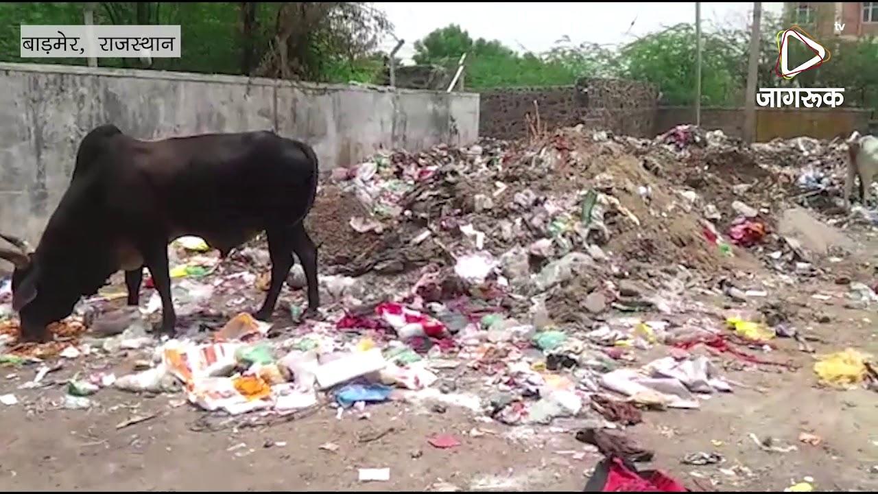 कचरे से अटी बाड़मेर की पॉश कॉलोनी, इलाके को लोग परेशान