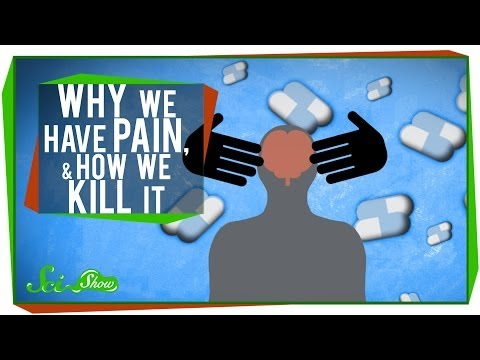 Why We Have Pain, & How We Kill It