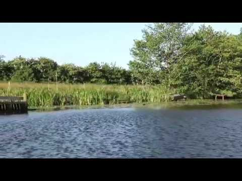 A Tour Of Blakemere Fishery, Whitchurch
