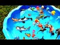 Box Of Toys Learn Sea Animal Names Learn Colors With Shark Ocean Creature Beach Toys For Children