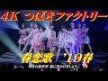 4K つばきファクトリー  春恋歌  '19春  歌詞付