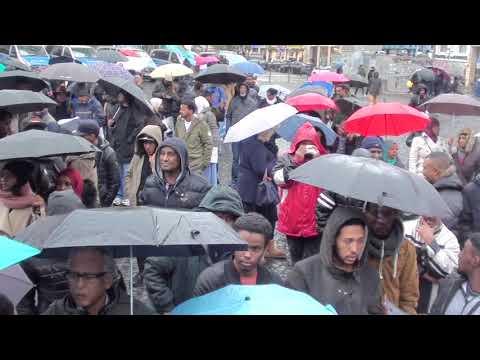 Eritrean demonstration in Frankfurt against Dictator 2017