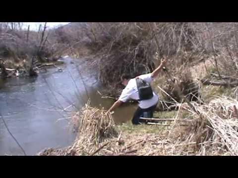 Fishing the East Canyon Creek - Utah Outdoor Activities