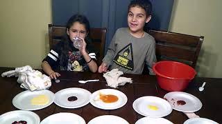 Blindfold taste test challenge