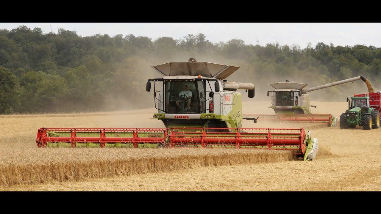 It's harvest time ! 2 x Claas Lexion 770, New Holland ...