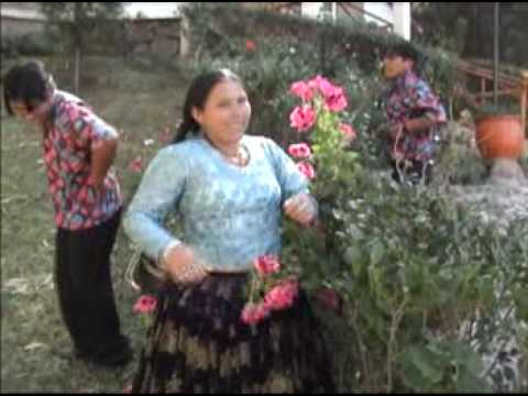 FOLKLORE BOLIVIANO - HUAYÑO BOLIVIANO