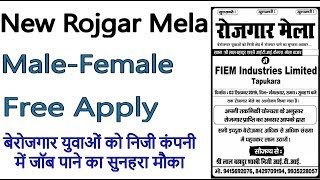 Private Job - Rojgar Mela 2019 For Freshers Candidates, No Age Limit, No Fees