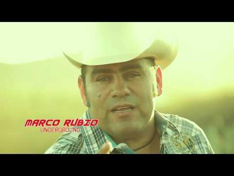 Cachuy Rubio Y Sus Compas-Cigarrito Grueso