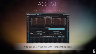 Newfangled Audio Punctuate - Transient Modulator Presets Demo