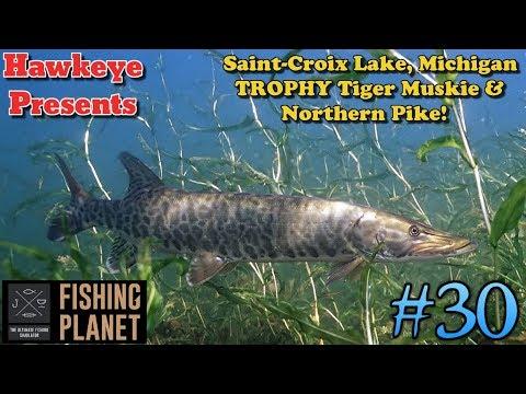 Fishing Planet S2 - Saint-Croix Michigan: TROPHY Tiger Muskie & Northern Pike!