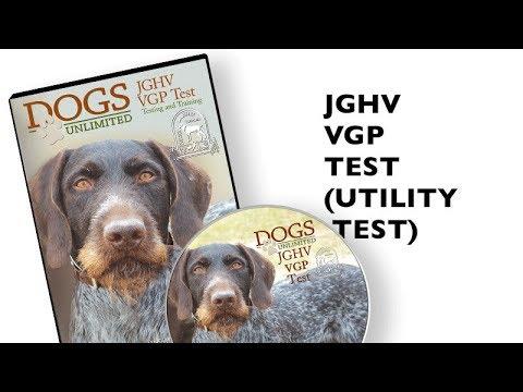 VDD-GNA JGHV VGP Test Trailer Official