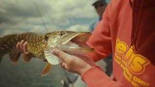 zvejybos