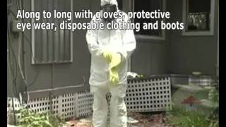 Ensuring Safety Against Asbestos Exposure After a Natural Disaster
