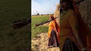 Haryana song jaatni