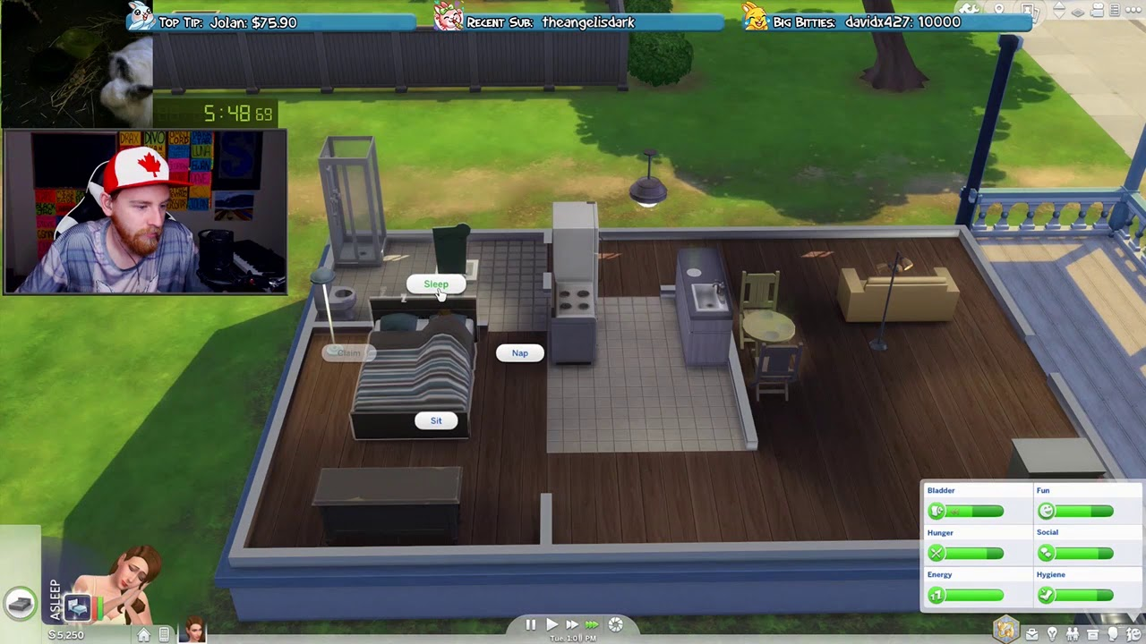 [WR] The Sims 4: Child Protection Services Speedrun in 8:35