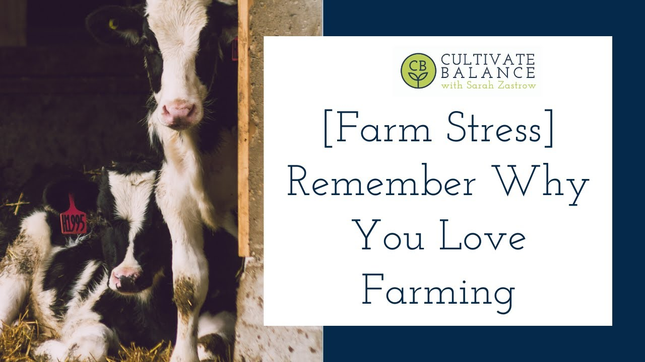 Remember Why You Love Farming-to Decrease Stress and Overwhelm