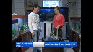 Как собрать аквариум(Программа